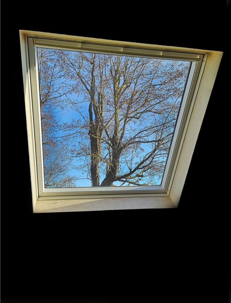 Fenêtres - Velux